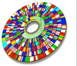 Fragmented Disk